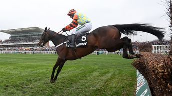 Might Bite jumps to victory at Aintree
