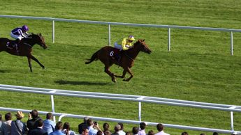 Sea Of Class wins easily at Newbury