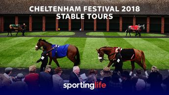 Cheltenham is around the corner...