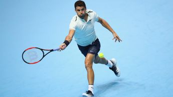 Grigor Dimitrov: Lost just two games to Goffin