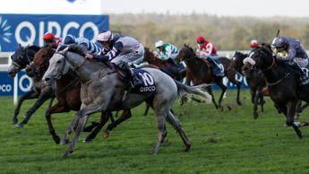 Lord Glitters (grey) wins the Balmoral Handicap
