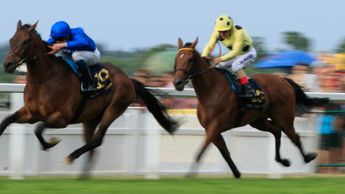Rare Rhythm leads Appeared