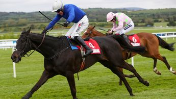 Woodland Opera scores at Punchestown