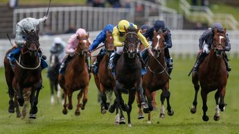 Young Rascal (yellow silks) wins at Chester