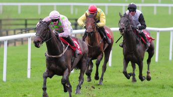 Willie Mullins-trained Getabird
