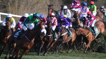 The Grand National field at the Canal Turn