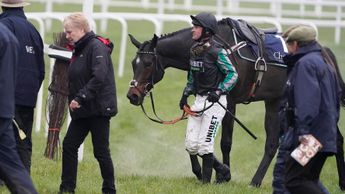 A tired Altior after his Ascot defeat