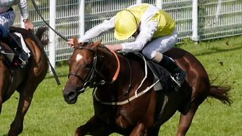 King's Advice winning at Goodwood