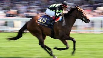 Lady Aurelia pictured winning the King's Stand
