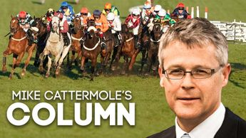 Read the latest Mike Cattermole column