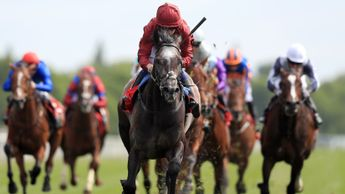 Roaring Lion destroys his rivals in the Dante