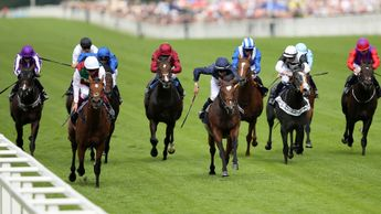 Without Parole wins the St James's Palace Stakes
