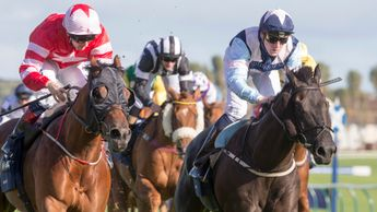 Son Of Rest and Baron Bolt dead-heat in the Ayr Gold Cup