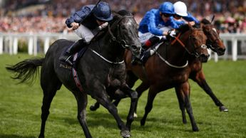 Caravaggio sweeps through to win the Commonwealth Cup