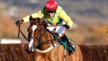 Sizing Tennessee - ticks a lot of the right boxes in the Scottish National