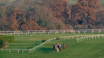 Cheltenham's November Meeting