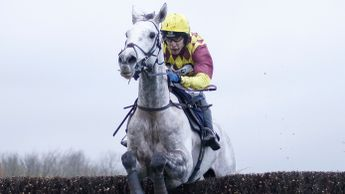 Ramses De Teillee - Haydock option