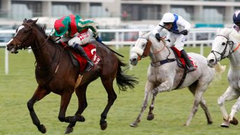 Daklondike battles to victory in the Mandarin Chase