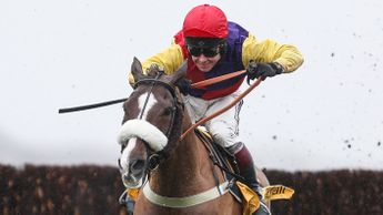 Native River impresses at Newbury