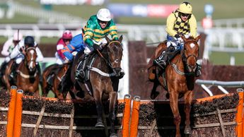 Buveur D'Air and Melon fight out the finish to the Unibet Champion Hurdle