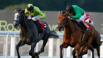 Eynhallow (r) leads Buzz