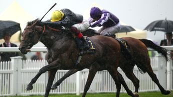 Crystal Ocean beats Magical at Royal Ascot