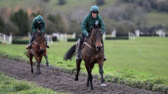 Ballykan on the gallops