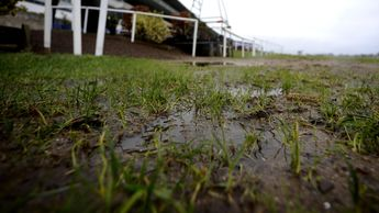 Waterlogged racecourse