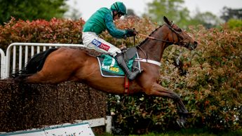 Top Notch jumps his way to victory at Sandown