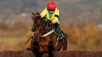 Fininan's Oscar jumps his way to victory at Cheltenham