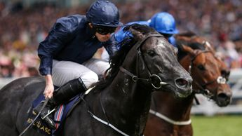 Caravaggio wins the Commonwealth Cup