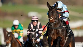 Lalor impresses on his chase debut at Cheltenham