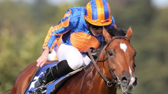 Mogul wins at Leopardstown
