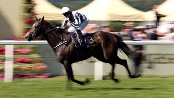 Alpha Centauri is brilliant in the Coronation Stakes