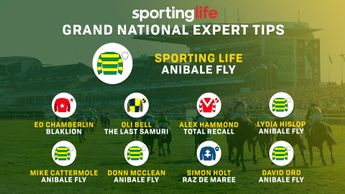 The Sporting Life Grand National tips
