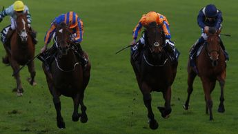 Order Of St George passes Torcedor to win the QIPCO Long Distance Cup