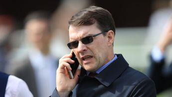 Trainer Aidan O'Brien