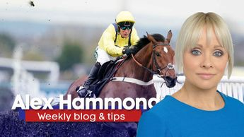 Alex Hammond gives her latest thoughts and tips