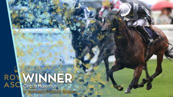 Circus Maximus - St James's Palace Stakes winner