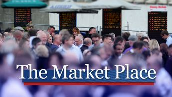 Find out all about the day's main markets movers and Sky Bet Price Boosts