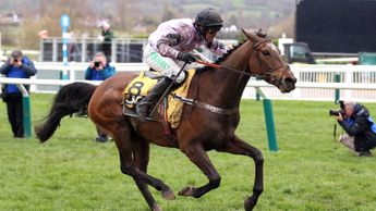 Pentland Hills on his way to Triumph Hurdle glory