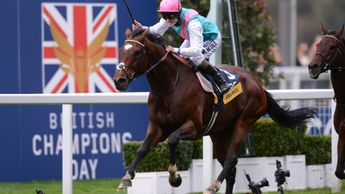 Frankel: Poster boy for the first two editions of QIPCO British Champions Day
