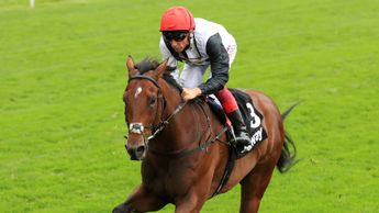 Cracksman: Fancied at Ascot