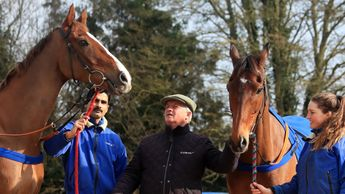 Colin Tizzard poses with Native River and Cue Card