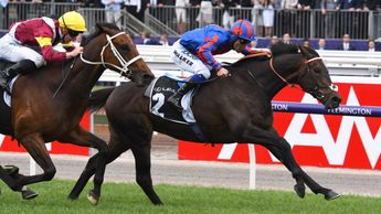 Prince Of Arran wins the Geelong Cup