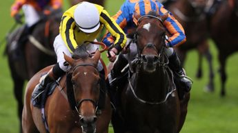 Big Orange and Order Of St George do battle at Royal Ascot
