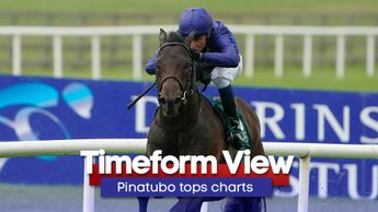 Pinatubo's Curragh peformance comes under the spotlight
