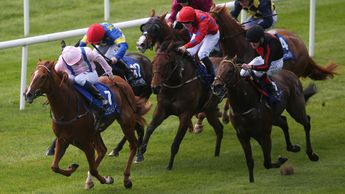 Shanghai Glory pictured winning at the Curragh