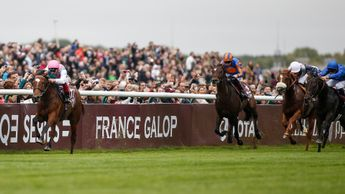 Enable storms to victory in the Qatar Prix de l'Arc de Triomphe