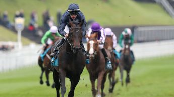 Sir Dragonet is a striking winner of the Chester Vase